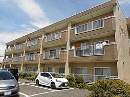 長野県松本市征矢野2丁目の賃貸マンションの外観