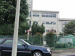 タウン・ヴィレッジE棟[1階]の外観