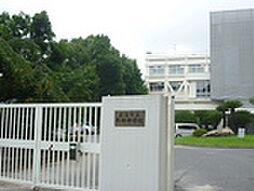 牛田早稲田新築マンション[0202号室]の外観