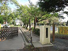 小学校ひたちなか市立勝倉小学校まで1299m