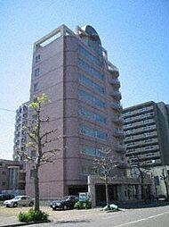 ビッグバーンズマンションN11[8階]の外観