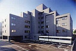 グランメゾン東札幌[207号室]の外観