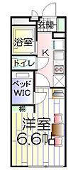 神奈川県横浜市南区前里町4丁目の賃貸マンションの間取り