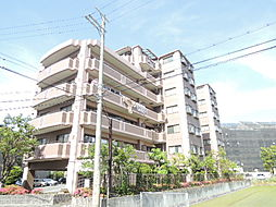 大阪府大阪市平野区長吉川辺3丁目の賃貸マンションの外観