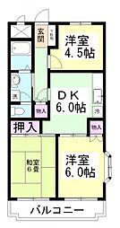 千葉県四街道市美しが丘3丁目の賃貸マンションの間取り