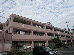 滋賀県守山市下之郷3丁目の賃貸マンションの外観
