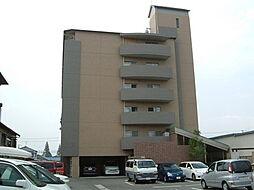 ヴィブレムライ[6階]の外観