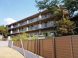 東京都調布市若葉町3の賃貸マンションの外観