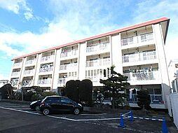 コーポ丸菊[2階]の外観