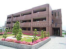 パルムドール弐番館[3階]の外観
