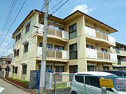 兵庫県西宮市中島町の賃貸マンションの外観
