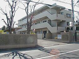 善福寺グリーンハイツ[305号室]の外観