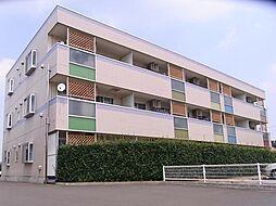 アネックスガーデン[0203号室]の外観