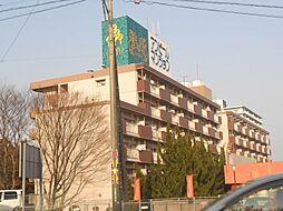 新栄二日市ハイツ[406号室号室]の外観