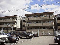 メゾンプラージュ[1階]の外観