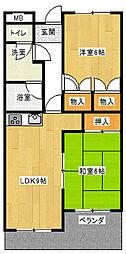 ヴァンヴェール赤坂[503号室]の間取り