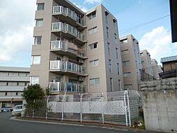 京都市伏見区日野西風呂町