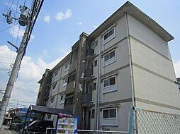 大清ハイツ[4階]の外観
