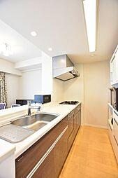 オープンスタイルのキッチンには、食器洗浄乾燥機・浄水器・整流板付きレンジフード・静音シンクなど快適設