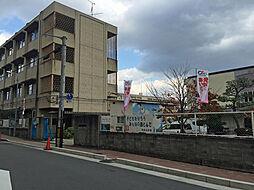 大阪府寝屋川市八坂町の賃貸マンションの外観