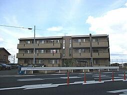 グレイストレビナ赤坂[1階]の外観