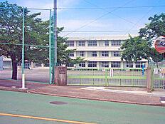 金井小学校