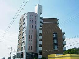 福吉リゾートエクセル55[3階]の外観
