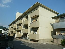 中川ハイツ[301号室号室]の外観