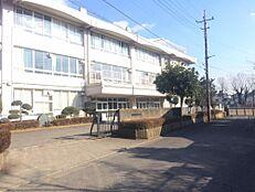 第五中学校851m