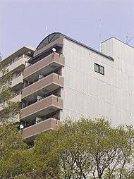 マッケンジー東堀川[503号室]の外観