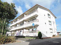 愛知県半田市有楽町3丁目の賃貸マンションの外観