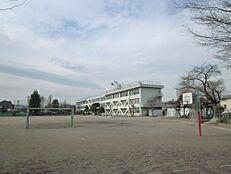 小学校昭島市立 拝島第一小学校まで559m
