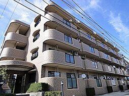 愛知県名古屋市守山区中新の賃貸マンションの間取り