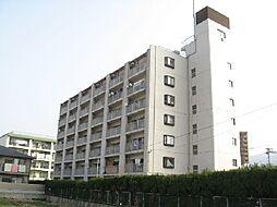 オリエンタルハイツ[5階]の外観
