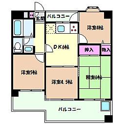 兵庫県神戸市灘区弓木町3丁目の賃貸マンションの間取り