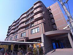 サンメゾンヒラソル[5階]の外観