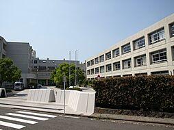 [テラスハウス] 神奈川県横浜市港北区鳥山町 の賃貸【/】の外観