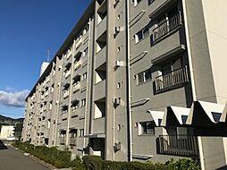 兵庫県神戸市東灘区渦森台2丁目の賃貸マンションの外観