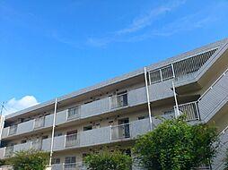 ひばりが丘シティプラザ[3階]の外観