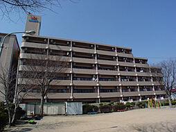 メゾン・ド・姫路野里[601号室]の外観