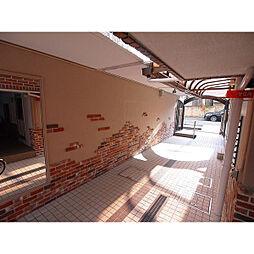 メイゾン神崎[505号室]の外観