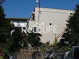 東京都国分寺市泉町の賃貸マンションの外観