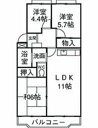 神奈川県藤沢市湘南台2丁目の賃貸マンションの間取り