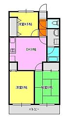 神奈川県相模原市中央区星が丘1丁目の賃貸マンションの間取り