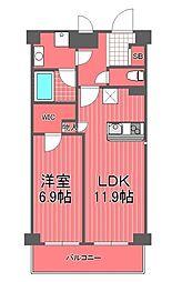 サンハイム戸塚[2階]の間取り