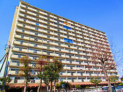 佐野湊団地[11階]の外観