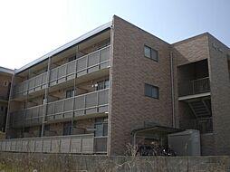 マンションベイビュー[2階]の外観