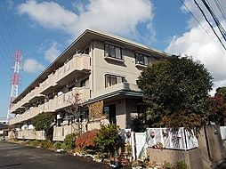 ガーデンハイツ小沢[203号室]の外観