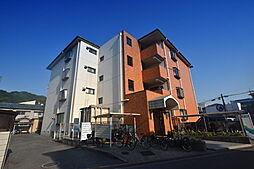 エコーハイツ2[4階]の外観