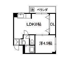 フォーシーズン京田辺[203号室]の間取り
